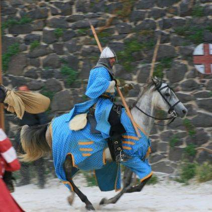 Chevaliers du château de Murol